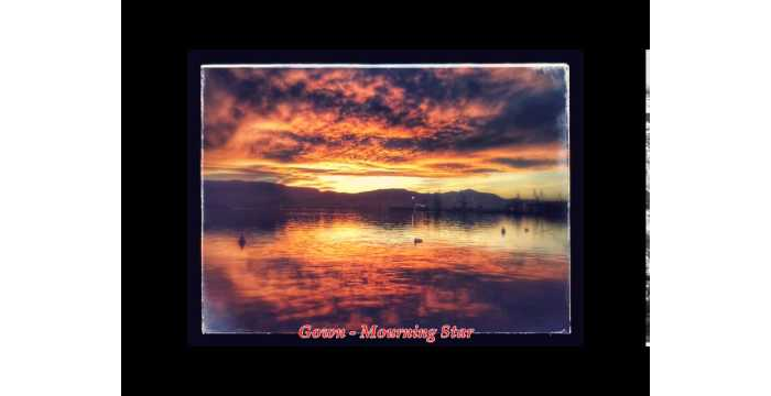 Gown - Mourning Star